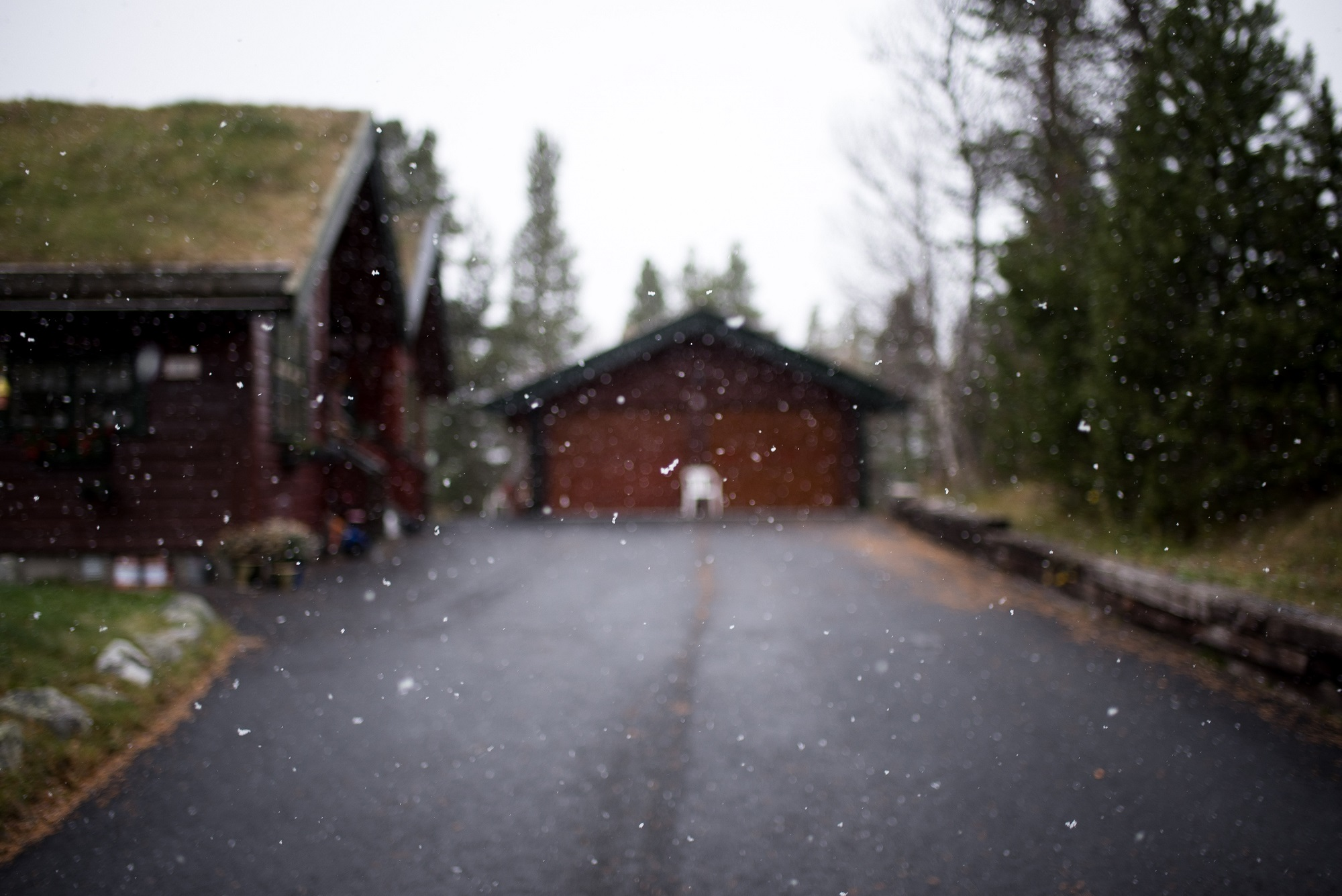 asphalt driveway in the winter